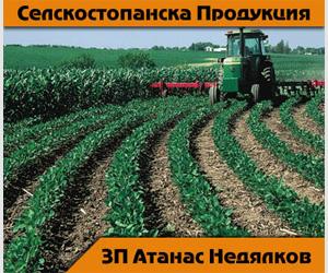 Атанас Недялков - Земеделски Производител