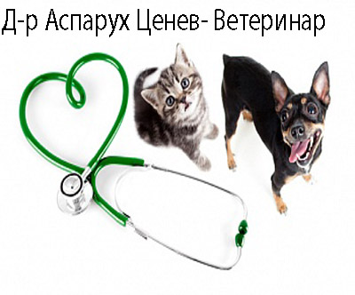 Д-р Аспарух Ценев- Ветеринар