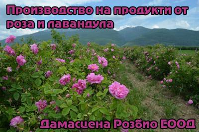 Дамасцена Розбио ЕООД