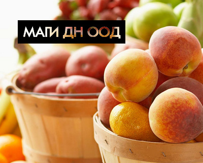 Маги ДН ООД