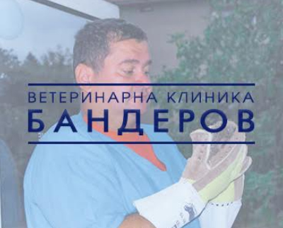 Ветеринарна клиника Бандеров