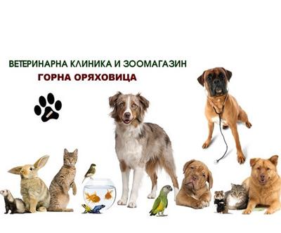 ЕТ Ваня Станиславова