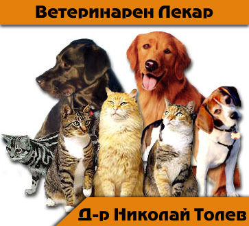 Д-р Николай Толев