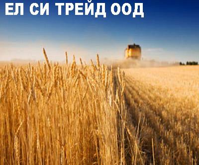 ЕЛ СИ ТРЕЙД ООД
