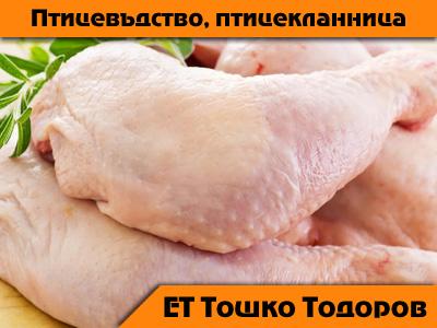 ЕТ Тошко Тодоров