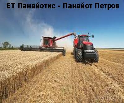 ЕТ Панайотис - Панайот Петров