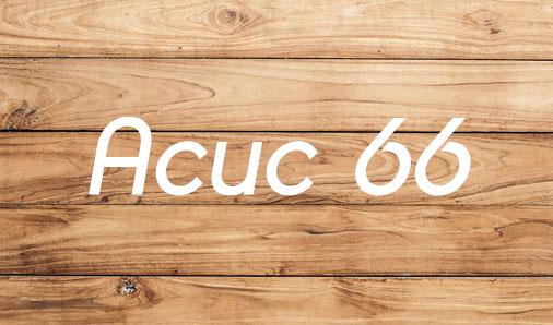 Асис 66 - Ергин Балъкчъ