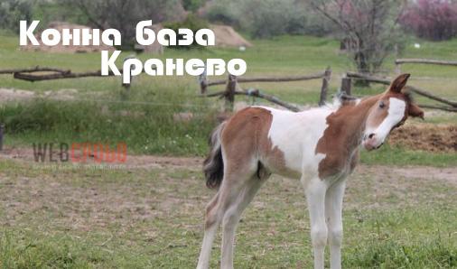 Конна база Кранево
