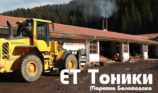 ЕТ Тоники - Марияна Беловодска