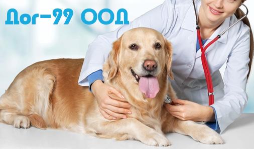 Дог - 99 ООД