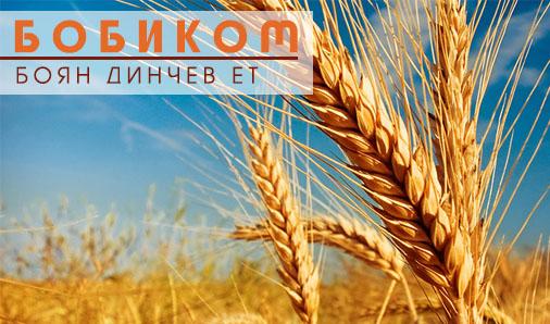 БОБИКОМ - Боян Динчев ЕТ