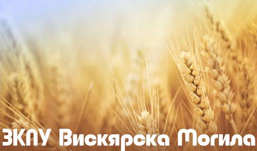 ЗКПУ Вискярска Могила
