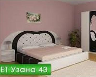 УЗАНА 43
